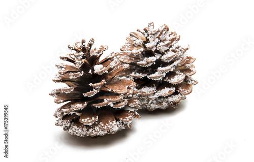 Fototapeta pine cones isolated obraz na płótnie