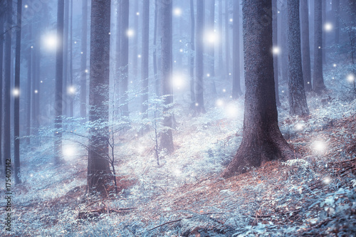 Beautiful blue color blurred foggy forest trees with illustrated abstract snowflakes.