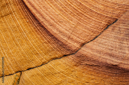 Photo sur Toile Les Textures Curved Rock Striations