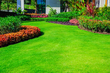 Landscape Formal, Front Yard I...