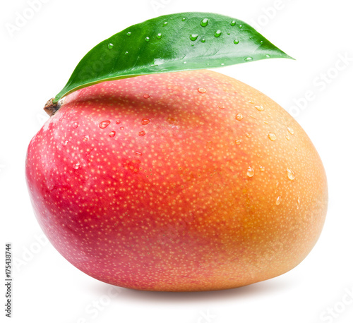 Mango fruit with leaf isolated on the white background.