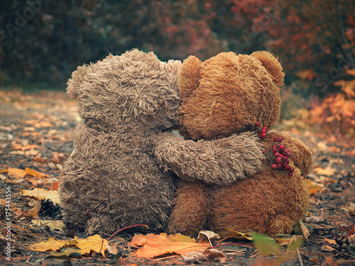 Fotografia Two Teddy bear hugging each other and looking at the autumn forest