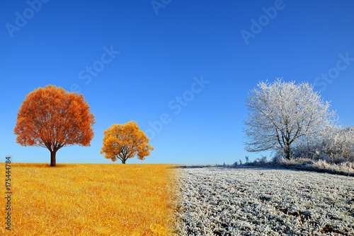 Fotografiet  Autumn and winter landscape with blue sky