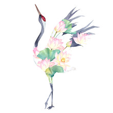 Watercolor Print With Crane Of...