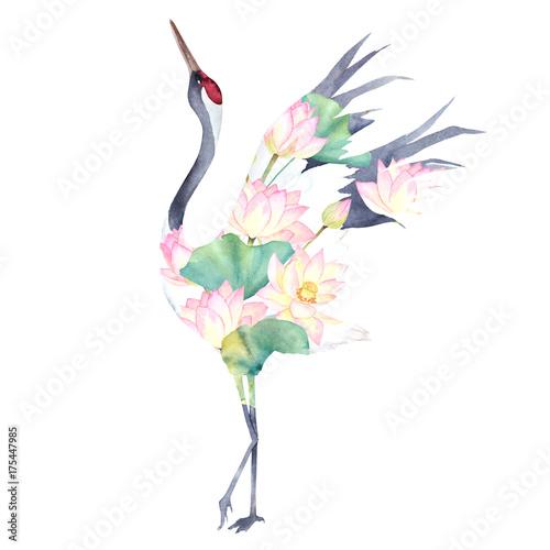 akwarela-druk-z-zurawiem-lotosowi-kwiaty-jezyk-japonski