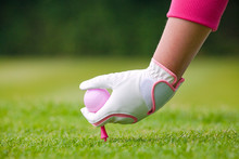 Lady Golfer Placing Pink Ball ...
