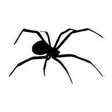 Spider Silhouette Icon Symbol ...