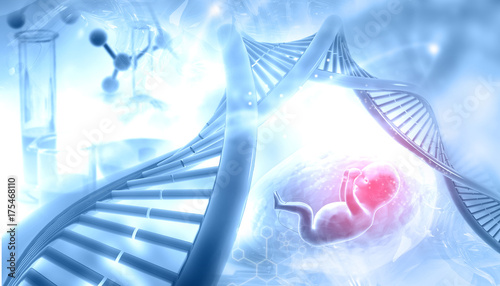 Fotografia, Obraz  Fetal with DNA on abstract background. 3d illustration