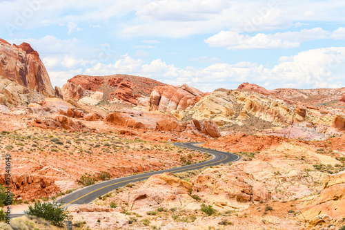 Aluminium Prints Salmon sinuous road crossing valley of fire desert, nevada