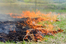 Fire Burning Dry Grass