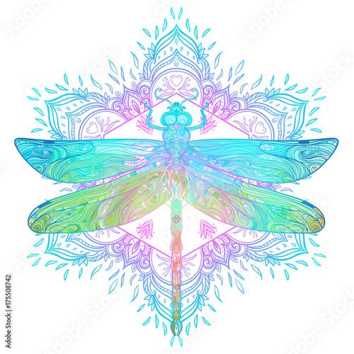 In de dag Boho Stijl Ornate dragonfly over colorful round mandala pattern. Ethnic patterned vector illustration. African, indian, totem, tribal, zentangle design.