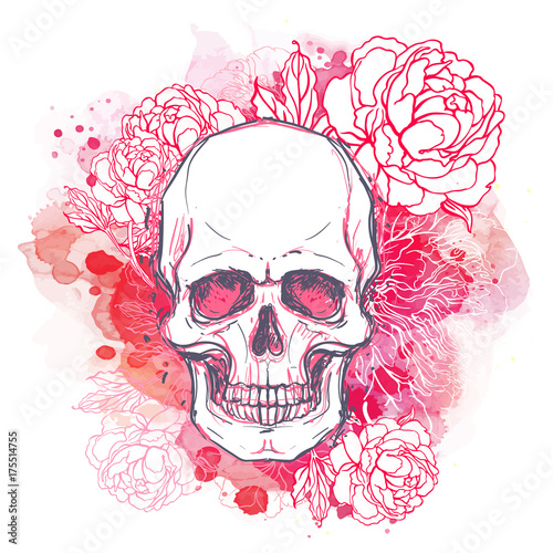 Poster Crâne aquarelle Human skull with peony, rose and poppy flowers on watercolor background.Tattoo design element. Vector illustration.