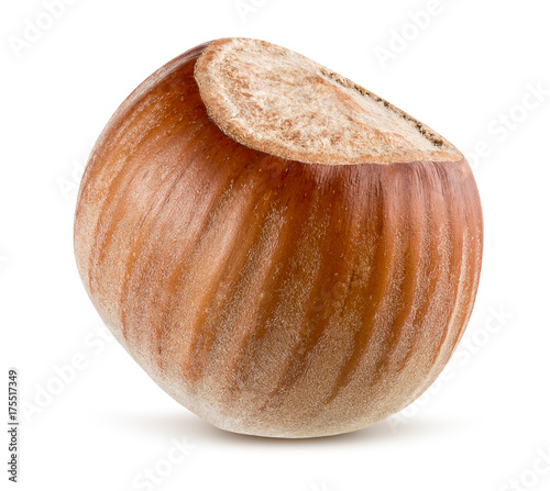 Hazelnut Isolated On A White Background Buy This Stock