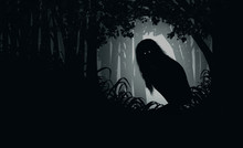 Ghostly Silhouette In Spooky Dark Forest,illustration Painting