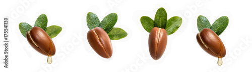 Argan nuts isolated for use in designs Wallpaper Mural