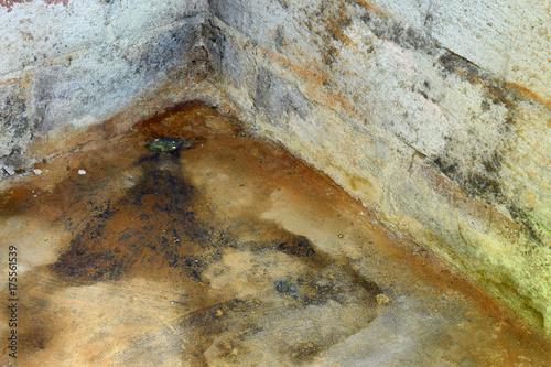 Fotografia, Obraz  Water damage and mold in basement