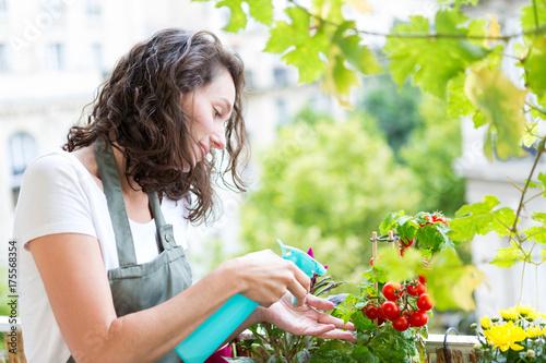 Plakat Młoda kobieta, podlewania pomidorów na jej mieście balkon ogród - natura i ekologia tematu