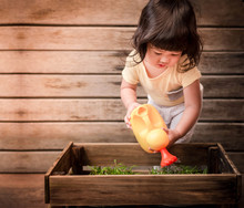 Cute Asian Girl Enjoying With Gardening Activities, A 2 Years Old Child Is Watering Vegetable In Wooden Pot