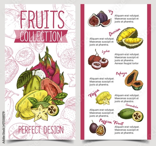 Fotografía Banner with tropical and exotic summer fruits