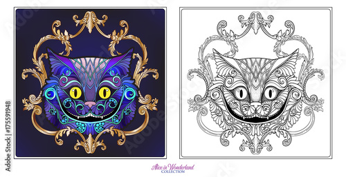 The head of the Cheshire cat from the fairy tale Canvas Print