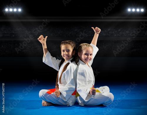 Fotografie, Obraz  Grils martial arts fighters