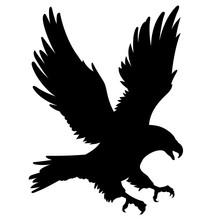 Eagle Silhouette 001