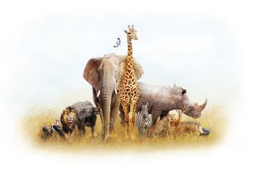 African Safari Animal Fantasy Land
