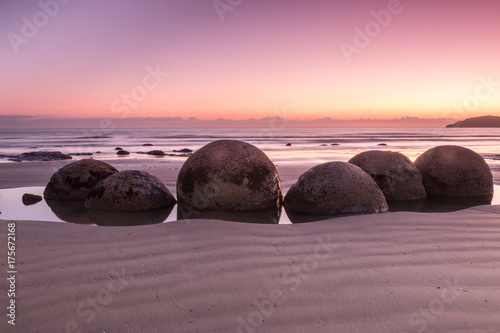 Moeraki Boulders at pink sunrise Canvas Print