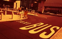 Lane For Busses And Taxis, Pic...