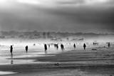 Ludzie cieni na plaży o zachodzie słońca - 175683384