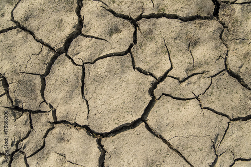 Zdjęcie XXL Popękana ziemia