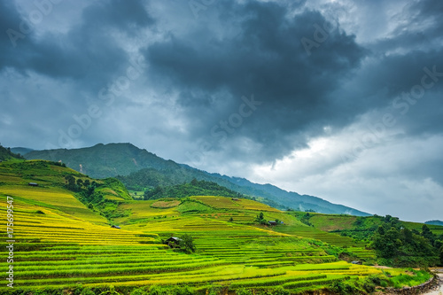 Tuinposter Blauwe jeans Beautiful landscape of rice terrace fields in Mu Cang Chai, Vietnam