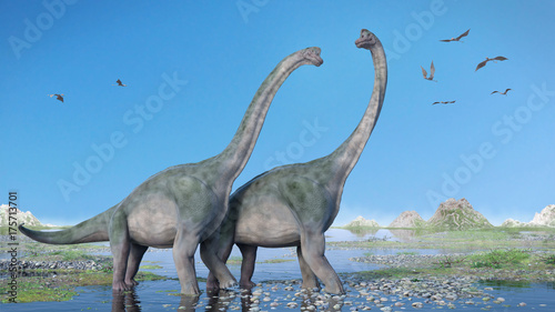 Poster Donkergrijs couple of Brachiosaurus altithorax and a flock of Pterosaurs in a scenic Late Jurassic landscape