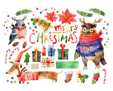 Cute Bird With Merry Christmas Congratulations