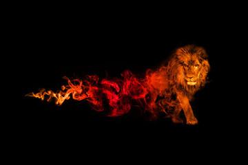 Kolekcija kraljevstva lavova sa nevjerojatnim učinkom
