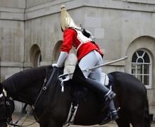 Life Guard Mounting Horse London.