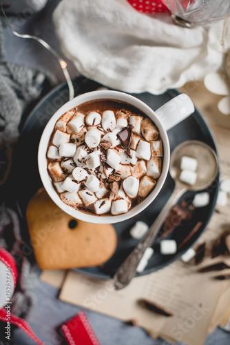 Spoed Foto op Canvas Chocolade gingerbread hot chocolate