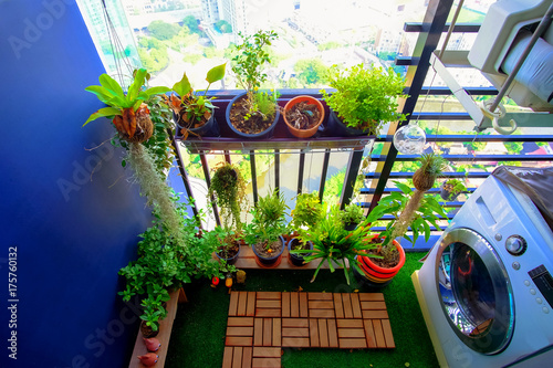 Photo natural plants in the hanging pots at balcony garden