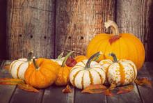 Mini Pumpkins And A Sugar Pie ...