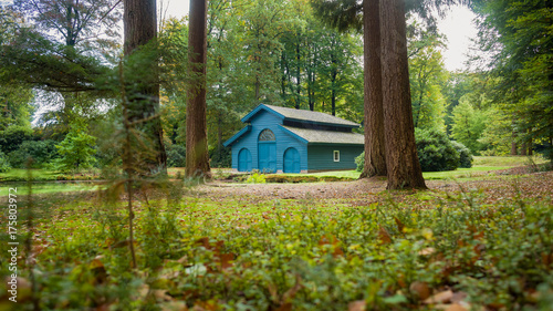 Autumn forest house for boats in the woods Wallpaper Mural