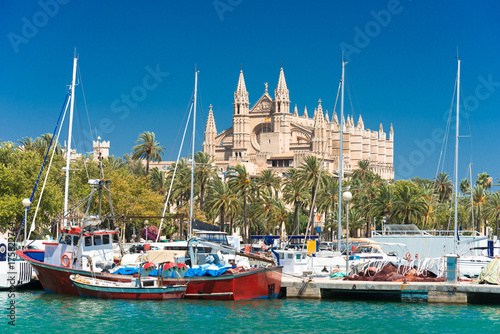 Poster de jardin Lieu d Europe View of Palma de Mallorca with Cathedral La Seu and the fishing port - 9325