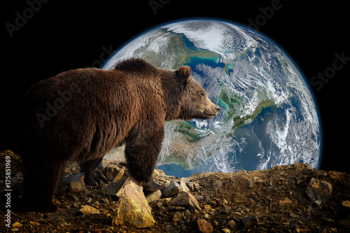 Brown bear on Earth background. Elements of this image furnished by NASA