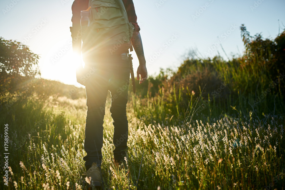 Fototapety, obrazy: male millennial hiker walking through grass in southern california during sunset