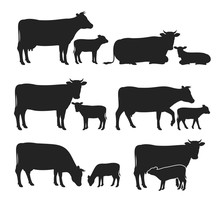 Vector Cow And Calf Silhouette...