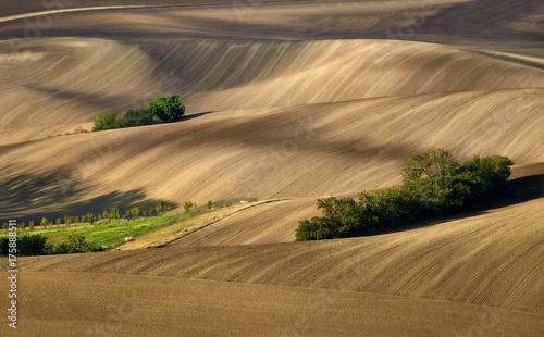 Zdjęcie XXL Morawskie pola, Morawy, Czechy, okolice wsi Kyjov