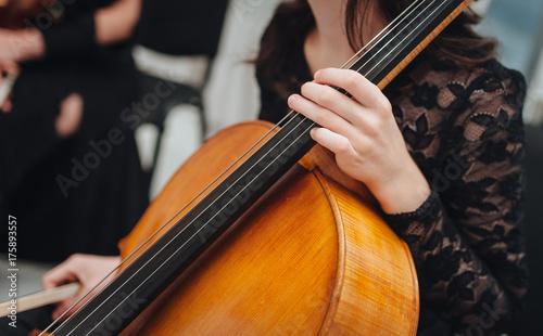 Plakat Kobiety ręka bawić się wiolonczelową klasyczną muzykę instrument