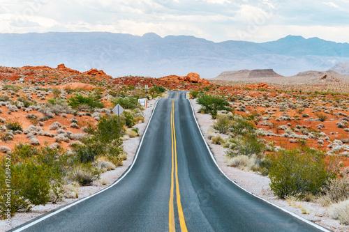 Obraz na dibondzie (fotoboard) niesamowita pustynna droga w dolinie ognia, nevada