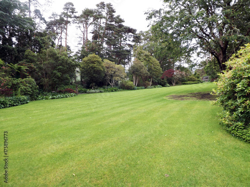 Aluminium Prints Garden Lawn and trees spase for text copy
