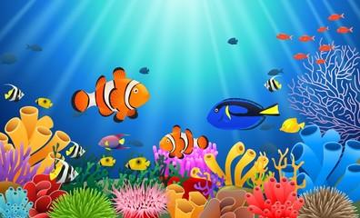 Clown fish under the sea. Vector illustration