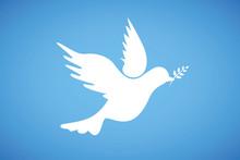 Friedenstaube Auf Blauem Hinte...